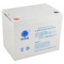 Batterie 12V 75AH WS15
